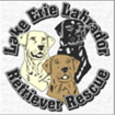 Lake Erie Labrador Retriever Rescue